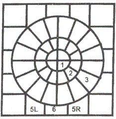 Regency Ripple Circle