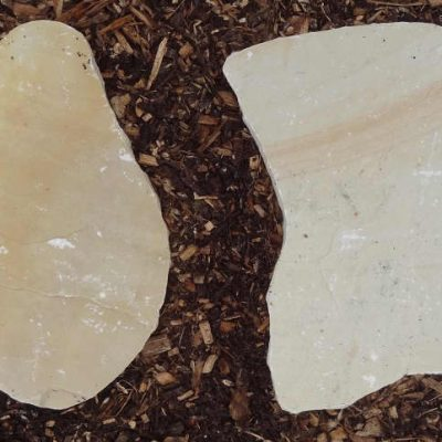 Natural Sandstone Stepping Stone Fossil Buff