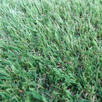 Exmoor Artificial Grass