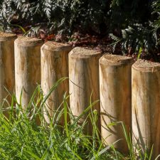 Timber log edging