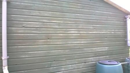 algae remover after