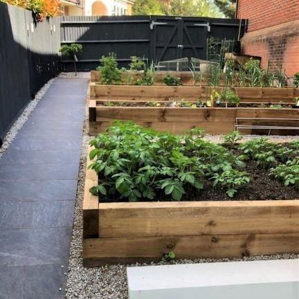 Vegetable beds made with timber garden sleepers