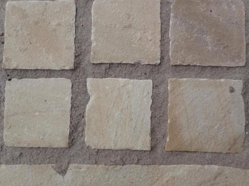 Indian Sandstone Setts Fossil Mint