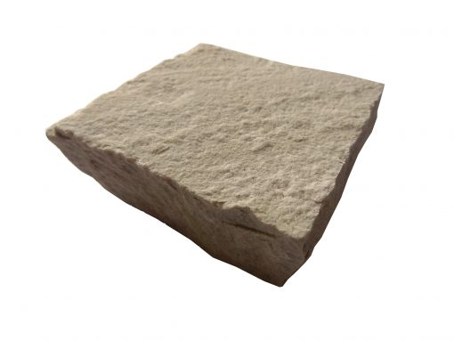Indian Sandstone Fossil Mint