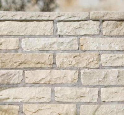 Indian Sandstone Walling Fossil Mint