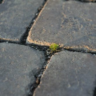 Five ways to keep your patio clean and clear