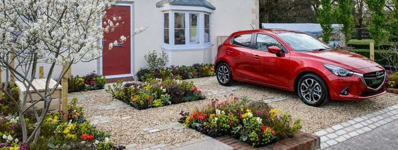 Front garden with planting and parking