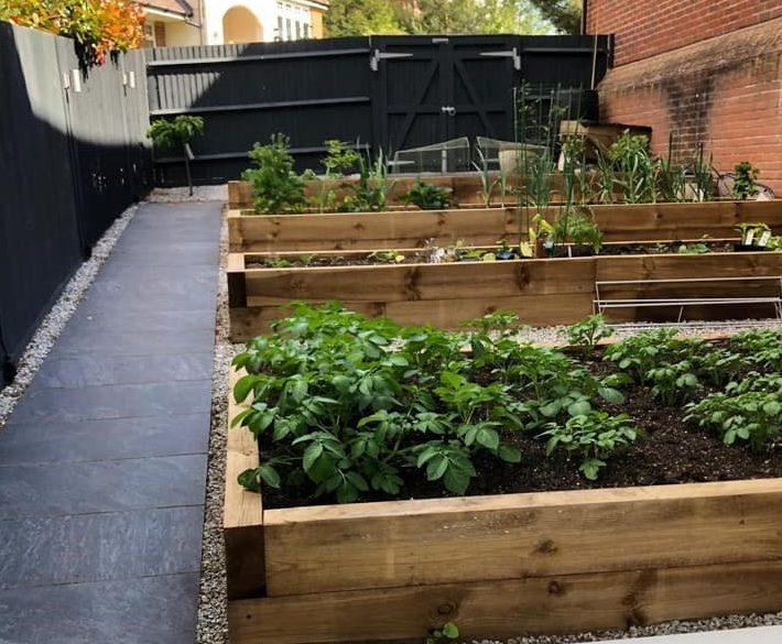 Raised vegetable beds made from garden sleepers with grey path