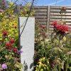 Light Grey Granite Landscaping Block/Kerb