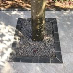 Natural granite edging round tree