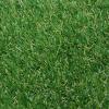 Ascot Artificial Grass