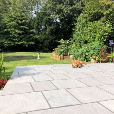 Andhra Grey Limestone patio with dog