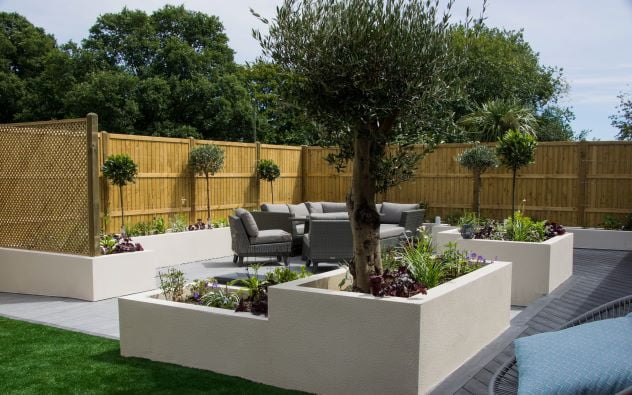 Rendered planters and olive tree