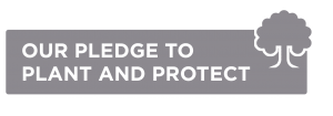 Pledge to plant and protect