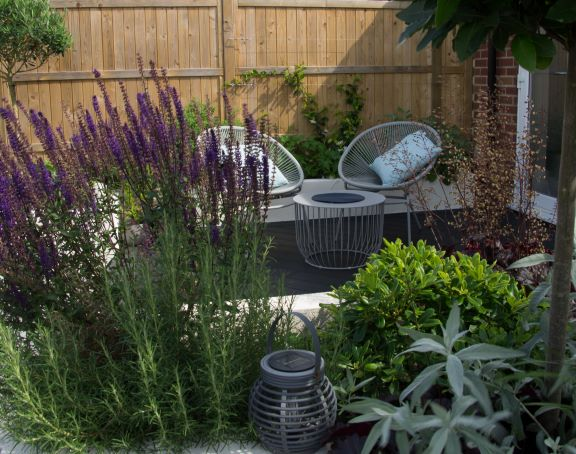 How to create a planet friendly garden