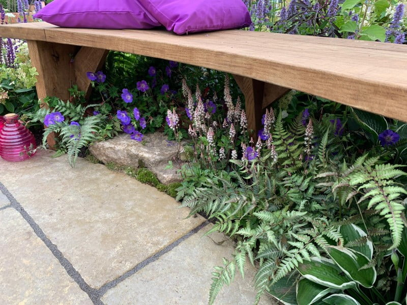 Woodland planting and boulder with garden bench